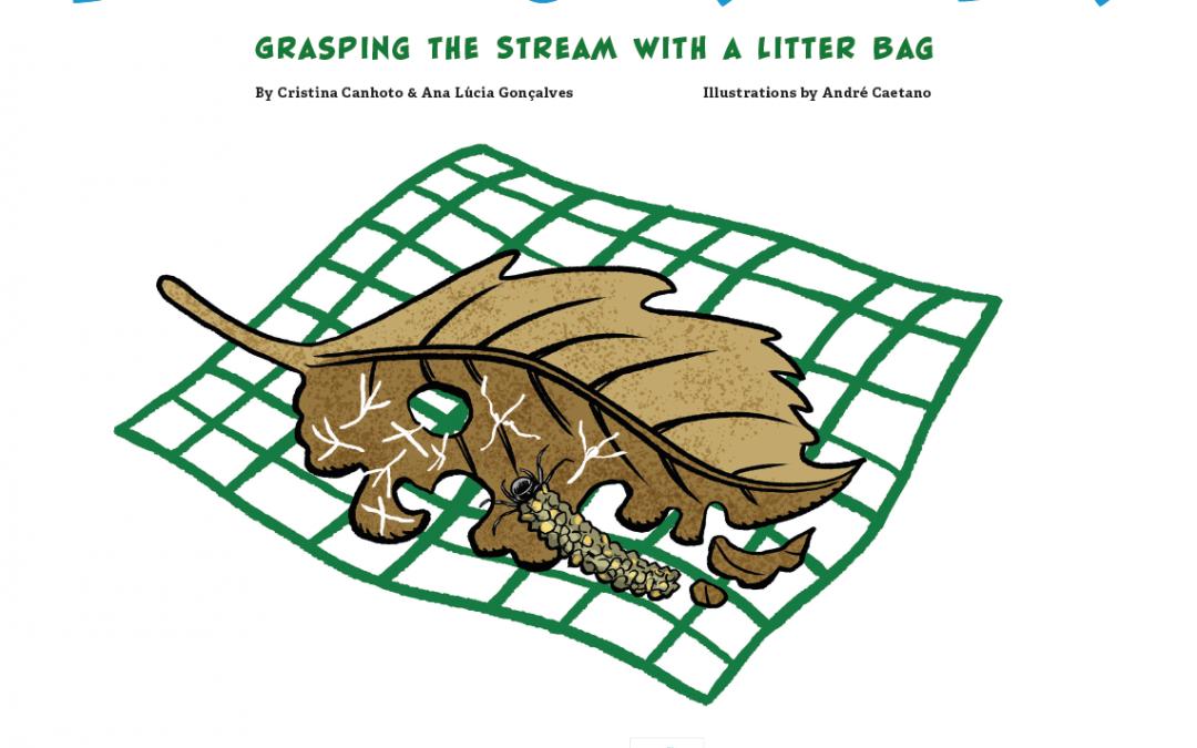 Leaf Decomposition methodology – Comic Book